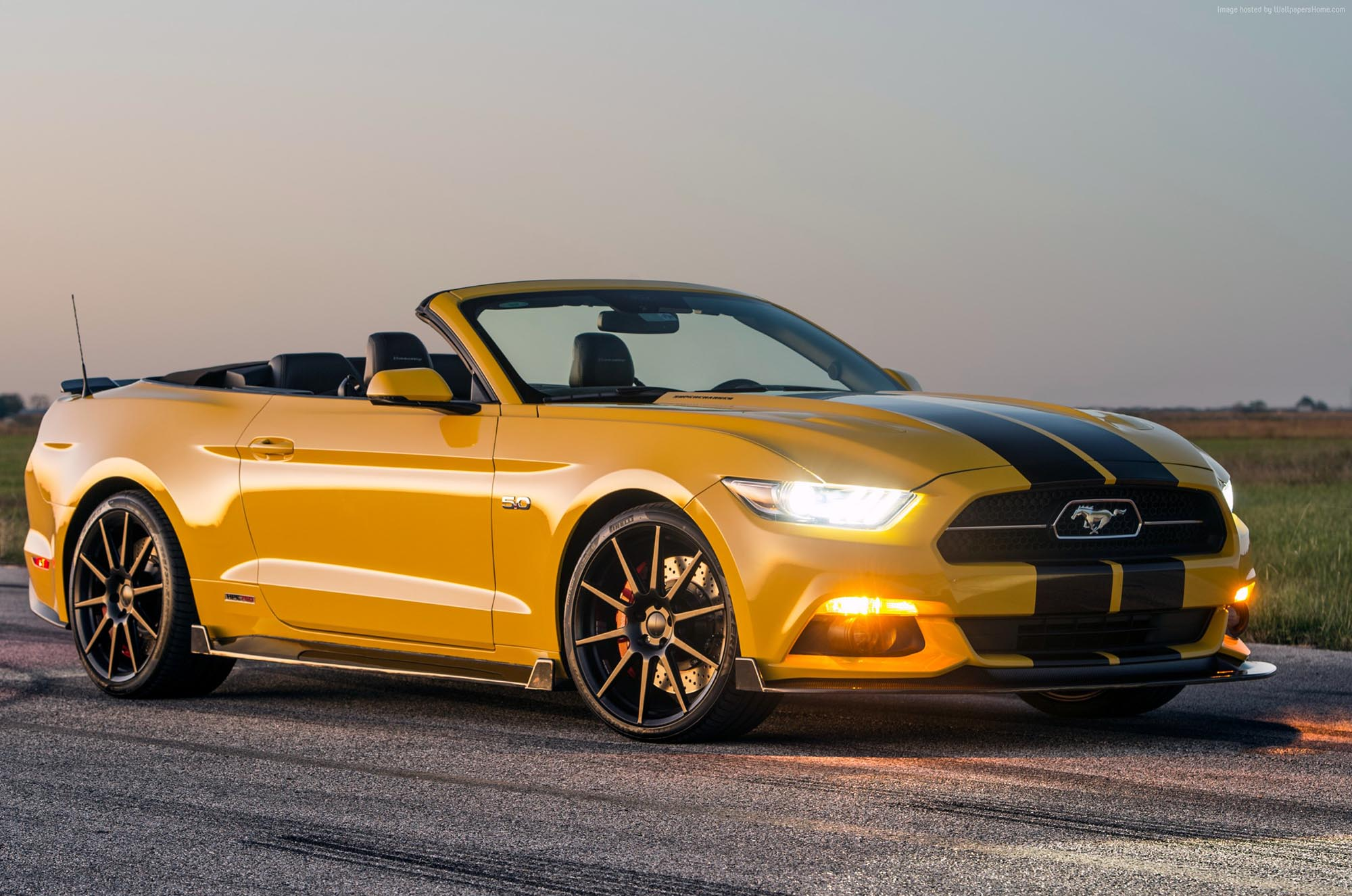 Ford mustang gt 5 0
